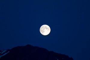 moon sharon randolph